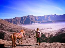 Bromo Tour Package 2 Days 1 Night